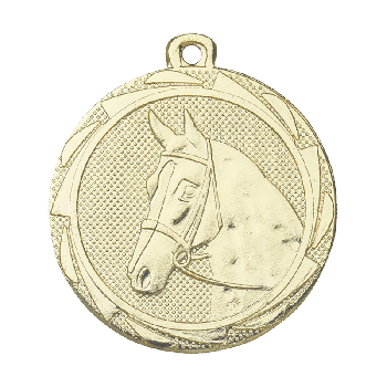 Medaille London Reitsport